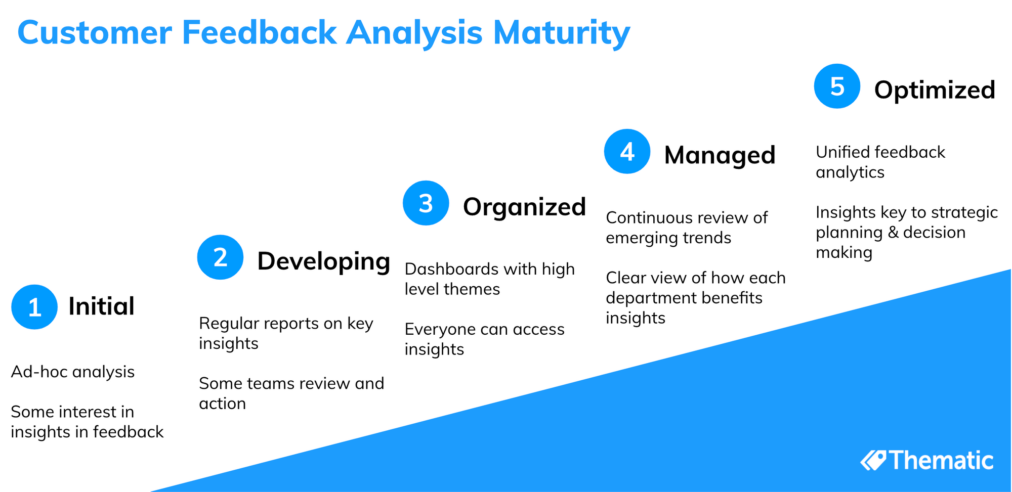 Our draft outline of a customer feedback analysis maturity model