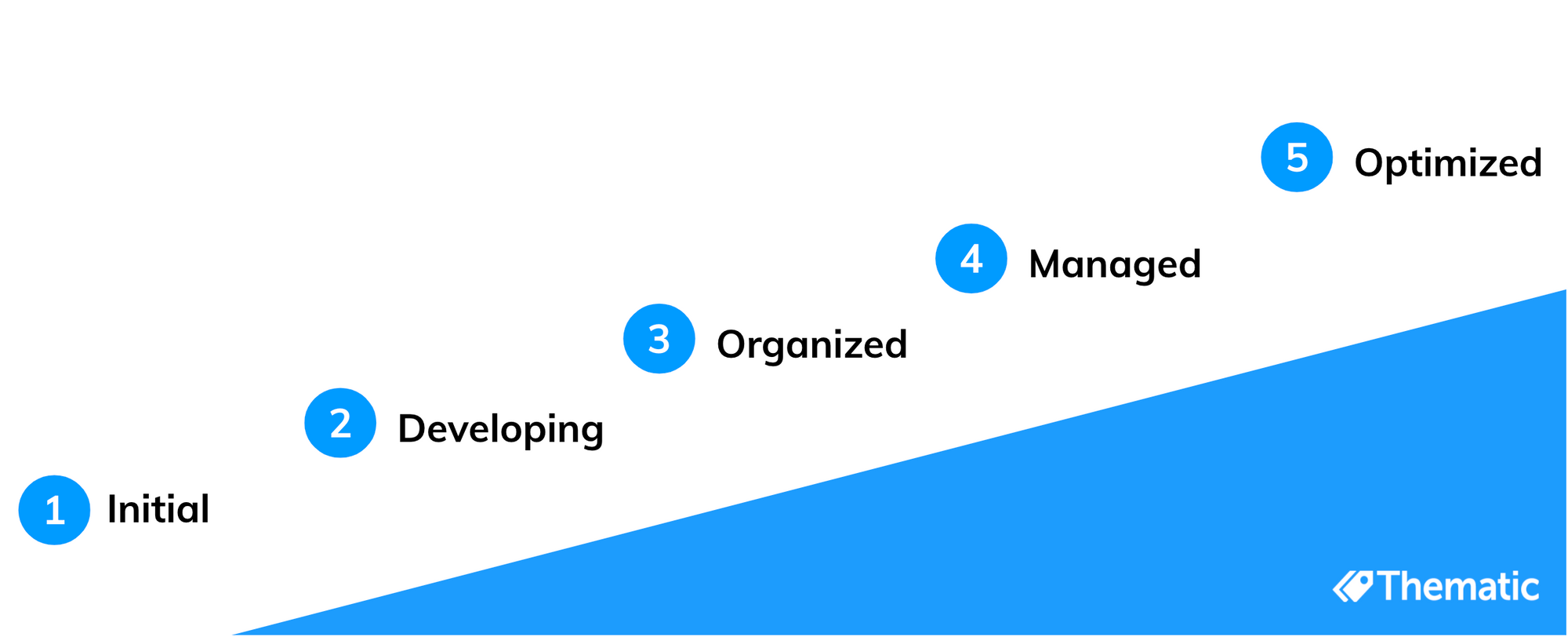 5 stages of the customer feedback analysis maturity model